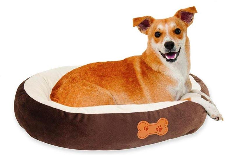 Aspen Pet Oval with Bone Applique