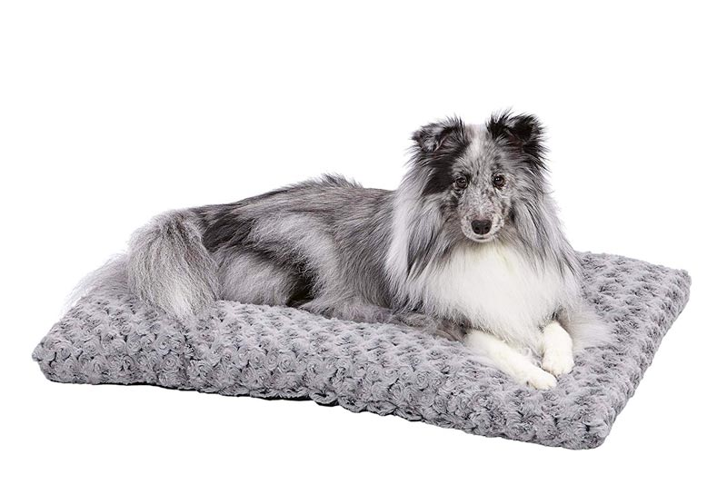 MidWest Homes for Pets Deluxe Pet Beds | Super Plush Dog & Cat Beds