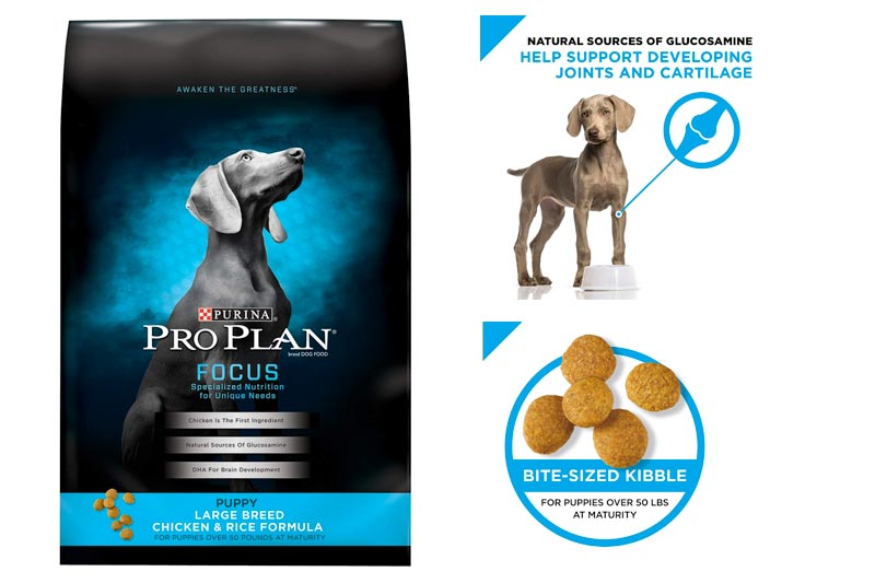 Purina Pro Plan Focus Dry Puppy Food